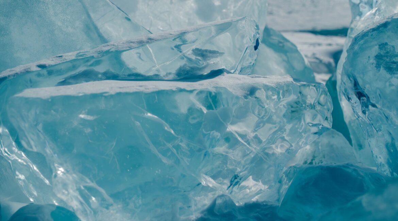 lodówka mrozi jedzenie